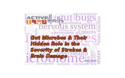 Gut Microbes and Their Hidden Role in the Severity of Strokes and Brain Damage