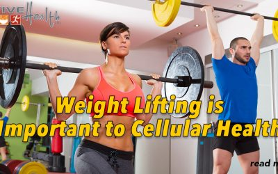 Weight Lifting Better than Cardio workouts for Improving Cellular Health