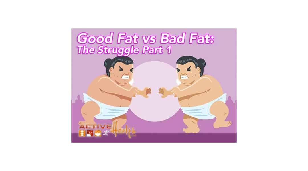 Good Fat vs Bad Fat: The Struggle Part 1