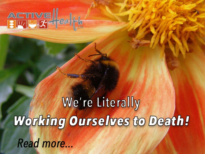 We're working ourselves to death—literally…