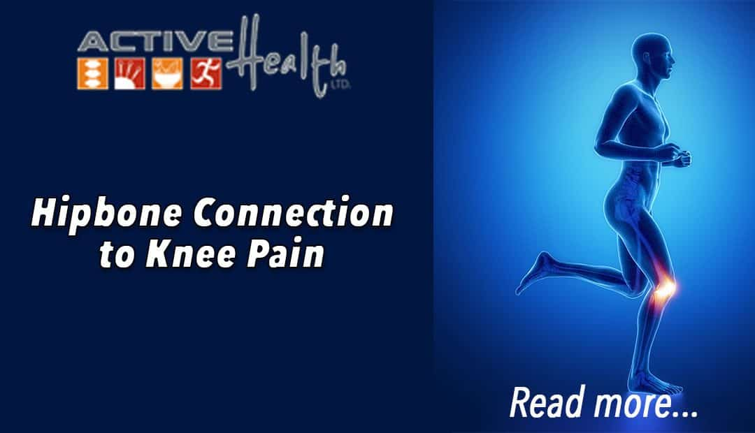 The Hip Bone is Connected to The Thigh Bone…