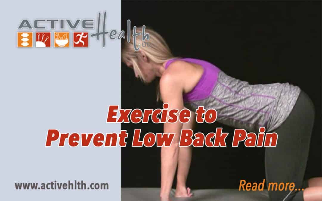 Want To Prevent Low Back Pain?  Exercise! 💪