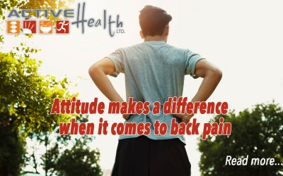 Insights Into Back Pain