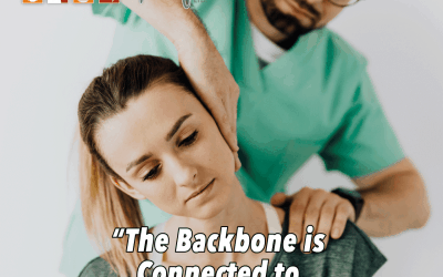 """""""The Backbone is Connected to the Neck Bone…"""""""