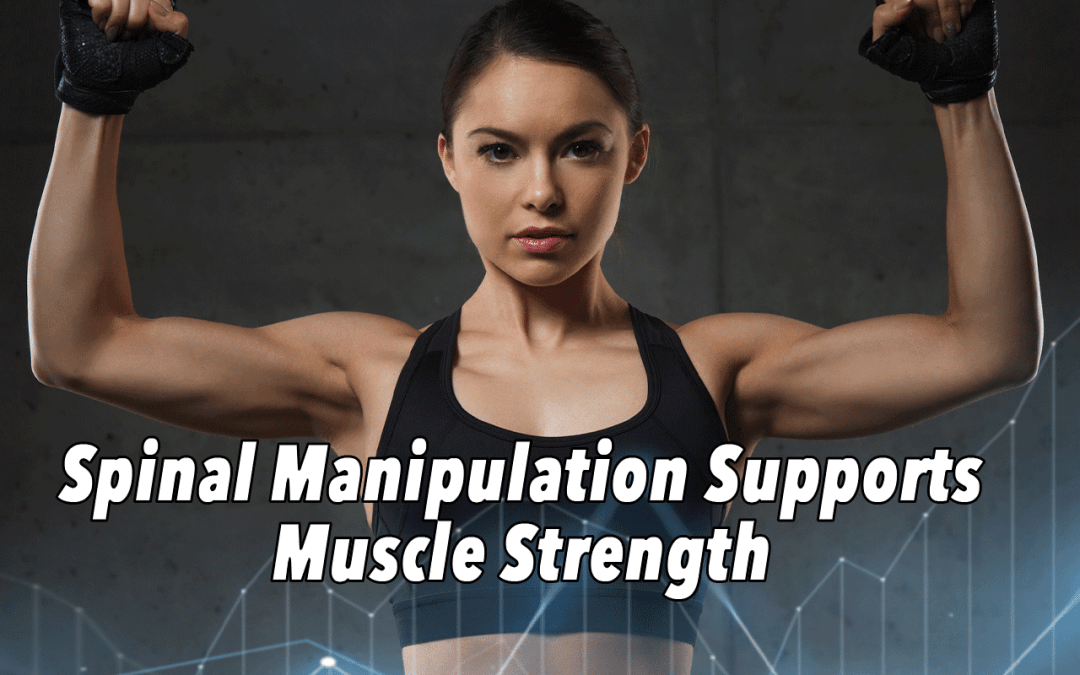 Spinal Manipulation + Muscle Strength